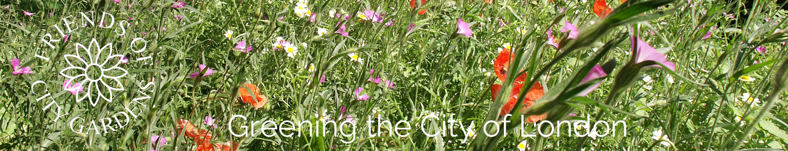 Friends of City Gardens